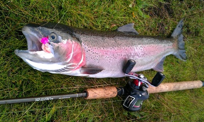 Steelhead fishing basics 3 must have baits for summer for Best salmon fishing lures
