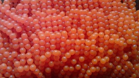 Soft Bead / single salmon egg GUIDE PACK - 250 Per Pack (8mm)